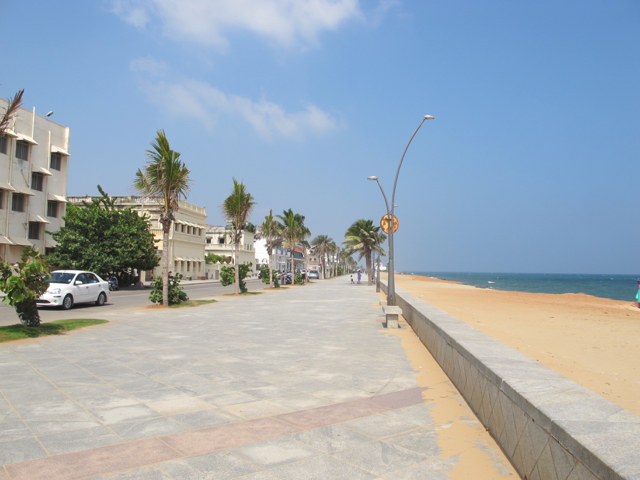Indien pondicherry strand baermonster